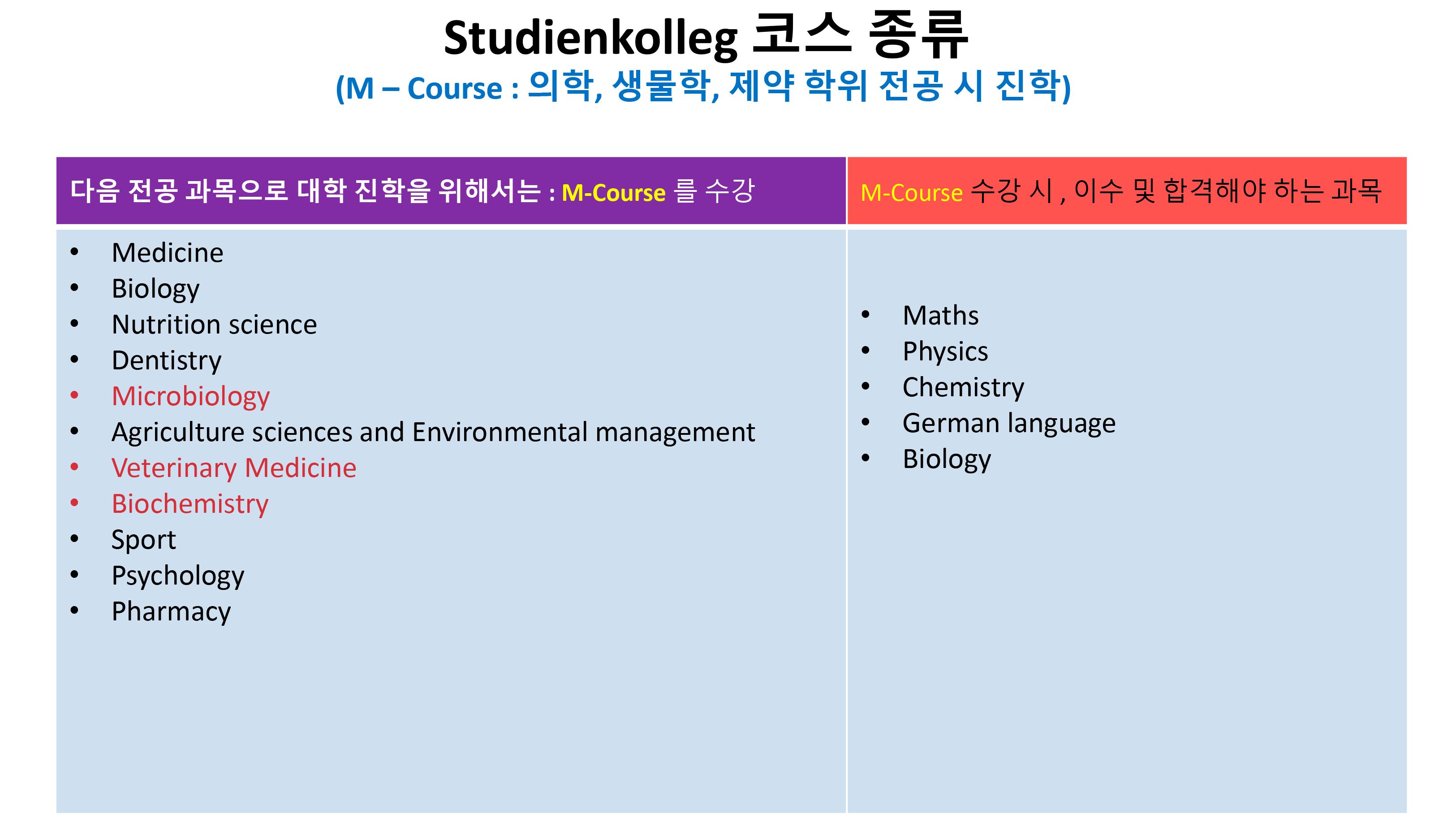 TLG-독일-어학연수-및-대학-진학반_유학원-설명용-(3)-25.png